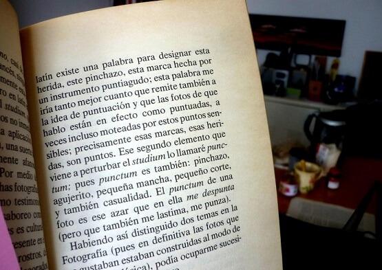 Acerca del libro de Barthes - La Cámara Lúcida