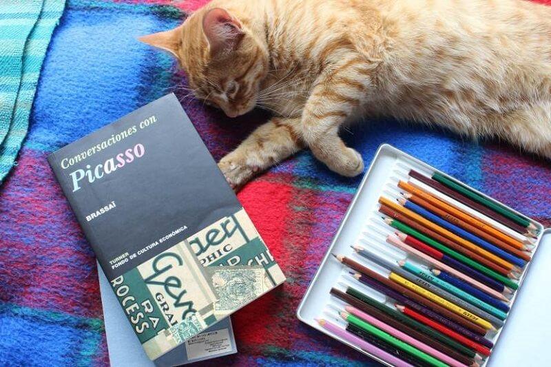 Reseña libro Conversaciones con Picasso - Brassai